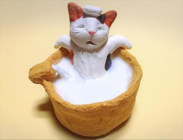猫にお風呂は必要?頻度や温度・入れ方!嫌がる時の対処法!