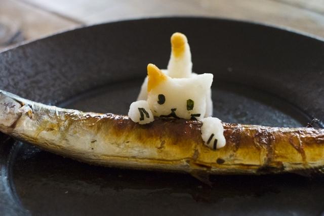 猫は魚が好き?食べてはいけない魚と注意点!